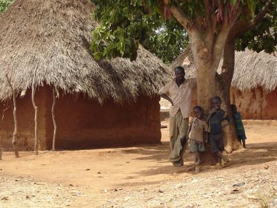 Cameroon Hut