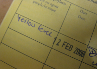 Yellow Fever Immunization Record