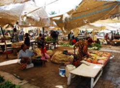 papua new guinea market