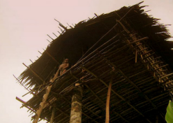papua new guinea tree house