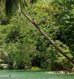 rope swing in philippines