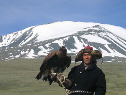 mongolian hawk trainer